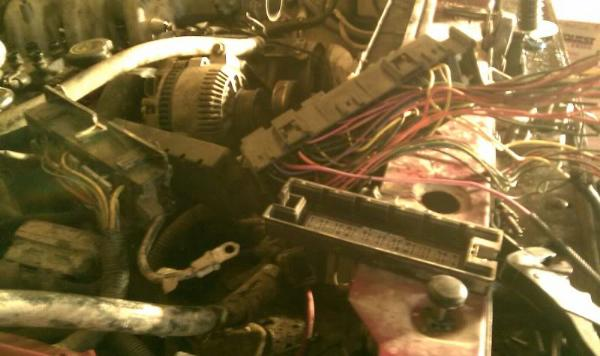 1989 Ford Bronco Ii 2 9l To 1994 Ford Explorer 4 0l Engine